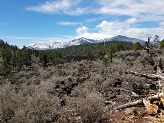 Sunset Crater Volcano National Monument: Beautiful view of Mt. Humphreys along with some of the volcanic landscape and surrounding forest