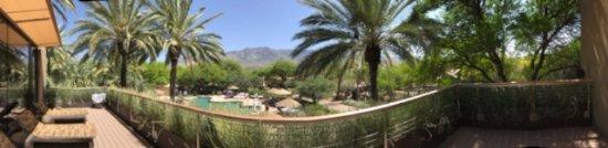 Miraval Arizona Resort & Spa: View from Spa patio to pool.