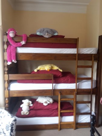 The very best bunk beds in the world! according to children of all