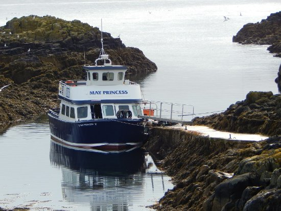 Fife, UK: One of boats offering transfer to Isle of May