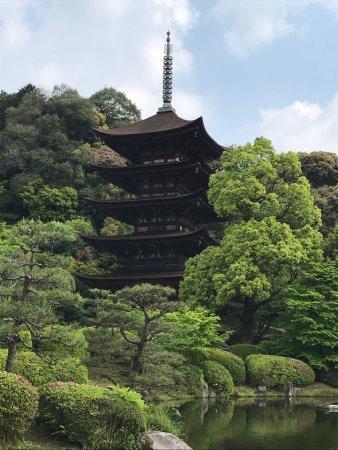Ruriko Temple Five-Story Pagoda : photo0.jpg