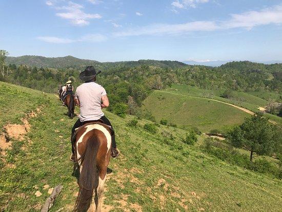 Smoky Mountain Trail Rides and Bison Farm: photo3.jpg