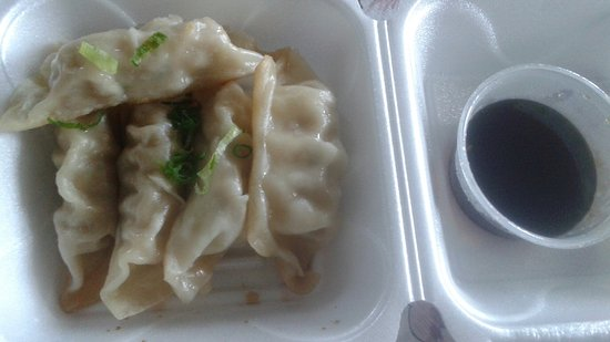 Valrico, FL: Pan Fried Pork Gyoza