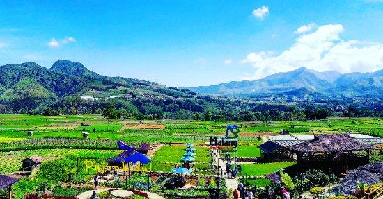 Desa Wisata Pujon Kidul - Picture of Pujon Kidul Tourism ...