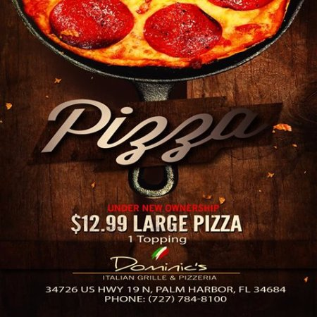Palm Harbor, FL: Large one topping pizza only $12.99