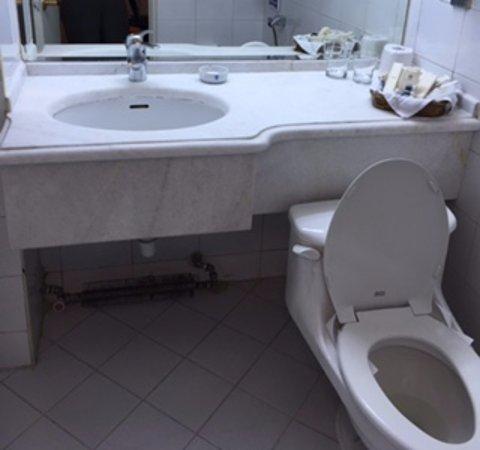laleh international hotel iran bagno con sistema di riscaldamento a vista