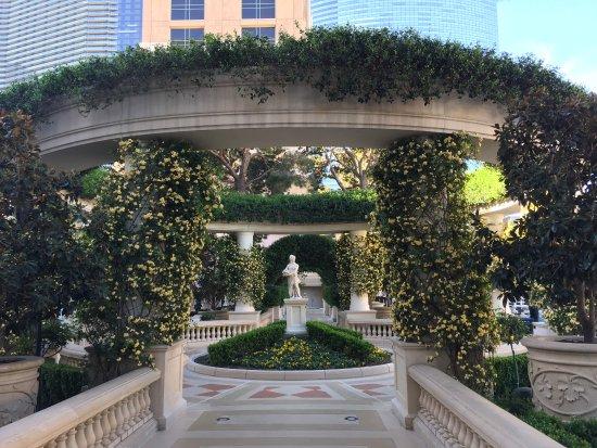 Bellagio Las Vegas Photo