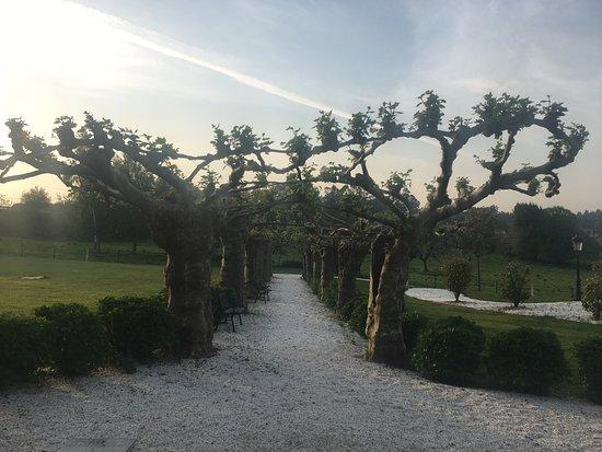Pazo Santa Maria: Il giardino incantato