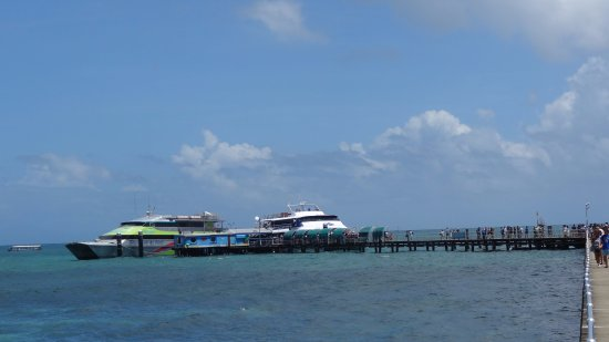 Great Adventures: View of boats at dock on Green Island