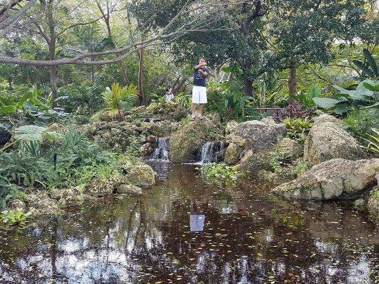 Deerfield Beach Arboretum: Mim e bebê