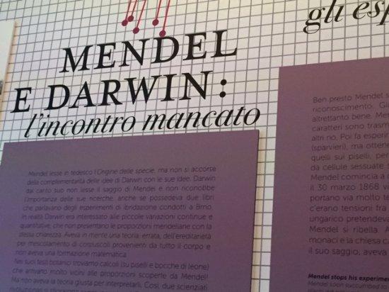Palazzo delle Esposizioni: La Mostra sul DNA, da Mendel alla genomica