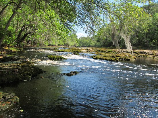White Springs, Φλόριντα: Big Shoals State Park