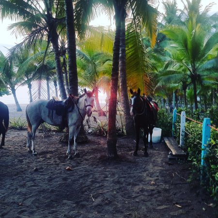 Esterillos Este, Costa Rica: IMG_20170429_200445_037_large.jpg
