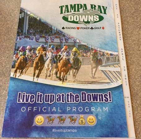 Tampa Bay Downs: photo4.jpg