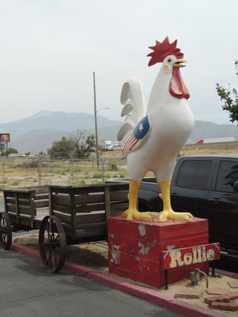 Banning, Califórnia: Rollie the Chicken