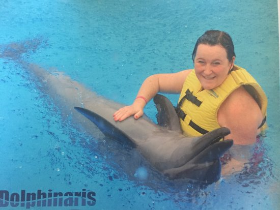 Dolphinaris Tulum: Wonderful experience, very well cared for by the very professional and knowledgeable staff