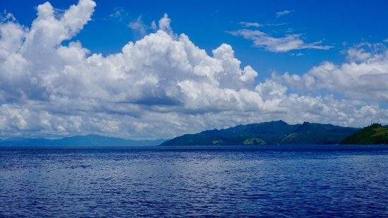 Peters Dive Resort: A view of Sogod Bay