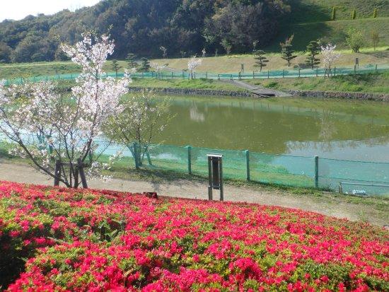 Sumoto, Japan: 広い庭