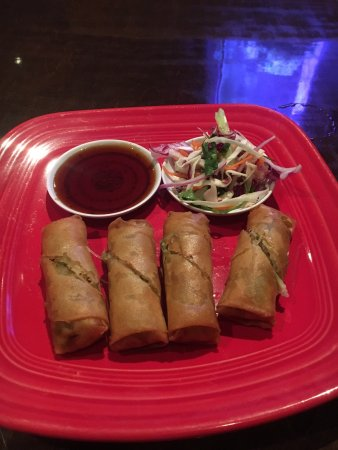 Chicken spring roll appetizer highly recommend picture for Asian cuisine norman