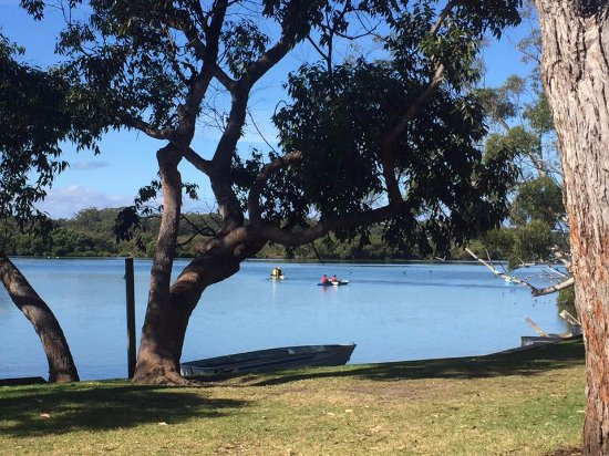 Huskisson, Australia: Great day for a Kayak at the park