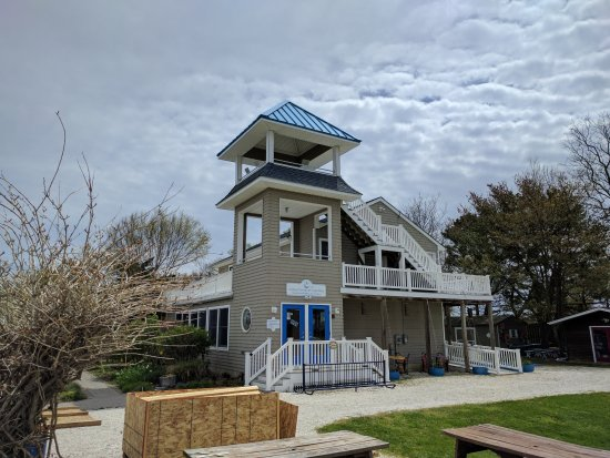 Nature Center of Cape May: Nature center