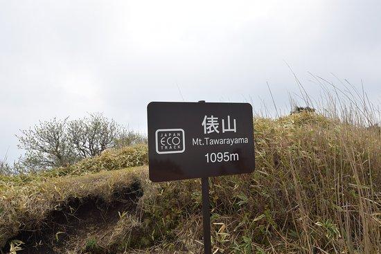 Mt. Tawara