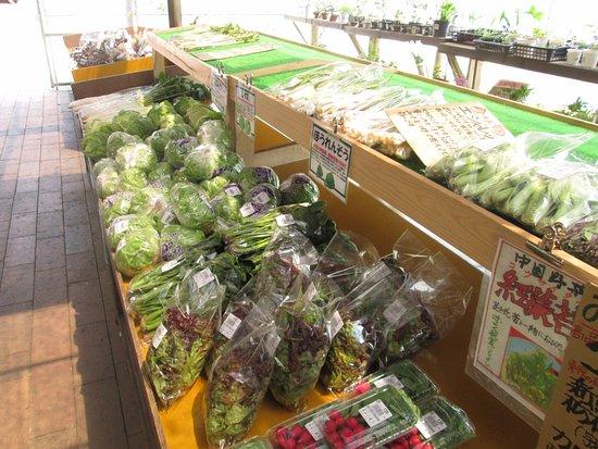 Meiji no Mori/Kuroiso Michi-no-Eki: 直売所の野菜