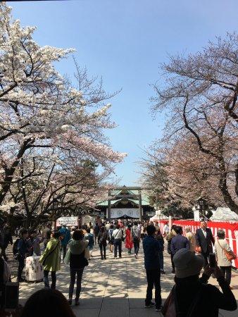 Yasukuni Shrine: photo2.jpg