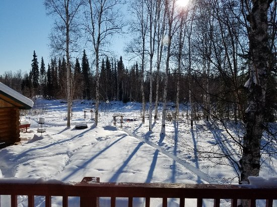 Riverbend Log Cabins & Cottage Rentals: view from the Sourdough balcony