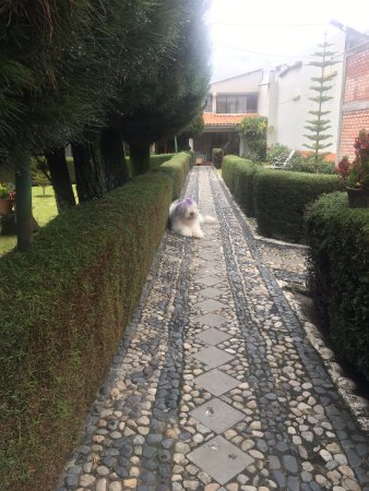 Hotel Colomba : Un hermoso :P