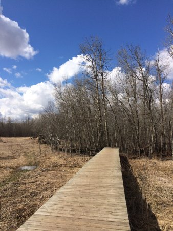 Elk Island National Park: Apr. 29, 2017; We did't see any Elk :(