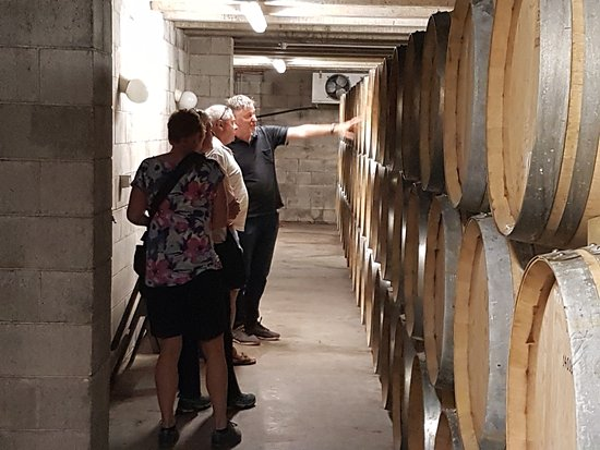 Auckland Fine Wine & Food Tours : Phil Parker shares some of his intimate wine knowledge with our tour group