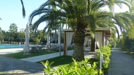 Minerva Resort Hotel Picture