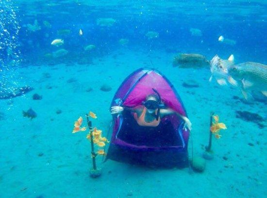 Umbul Ponggok Photo with waterproof camera phone in the tent! & Photo with waterproof camera phone in the tent! - Umbul Ponggok ...