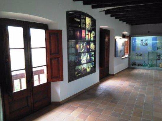 Vimbodi, Spain: Interior
