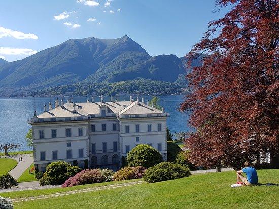 I giardini di villa melzi picture of i giardini di villa melzi bellagio tripadvisor - Giardini di villa melzi ...