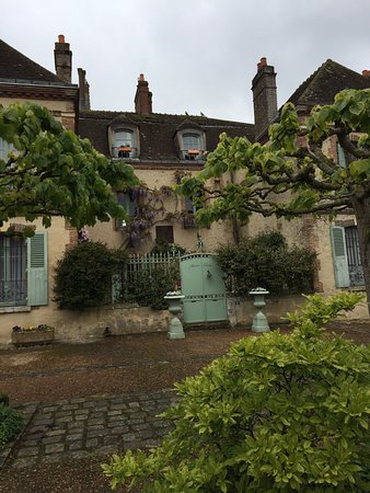 Maison Conti: Wisteria in full bloom!