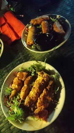 QD's: Spring rolls and chicken satay