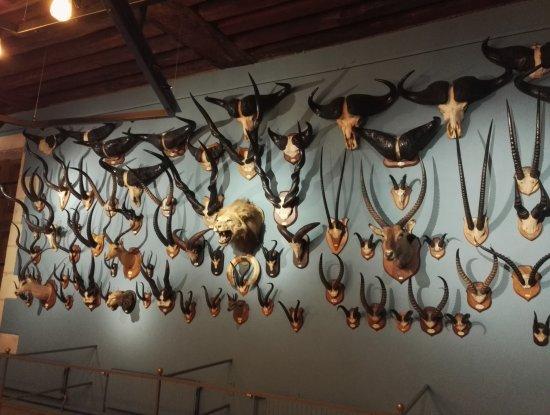 Centre-Val de Loire, Frankrike: Musée international de la chasse