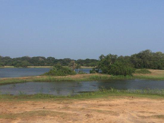 Yala National Park: photo2.jpg