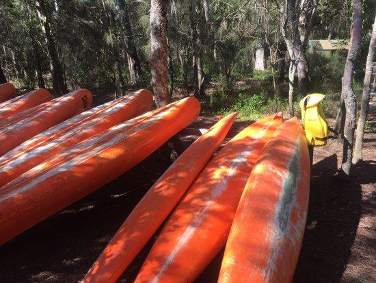 Woollamia, Austrália: photo1.jpg