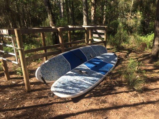 Woollamia, Australia: photo2.jpg