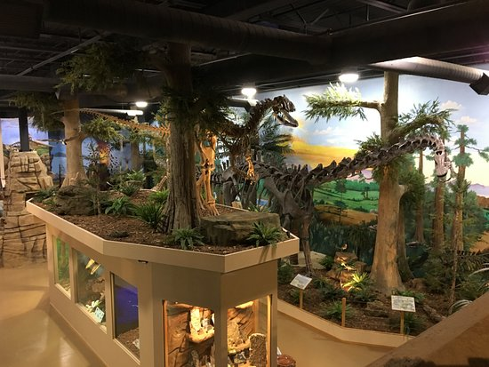 The Dinosaur A View Of One Side Museum As Seen From