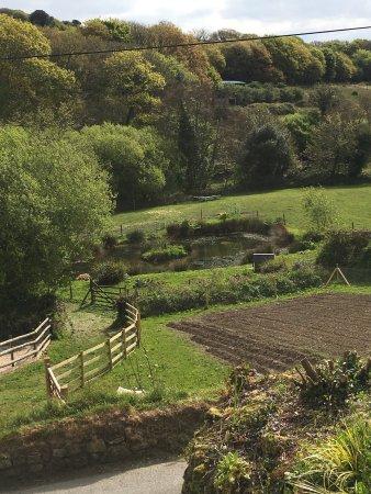 Polgooth gardens
