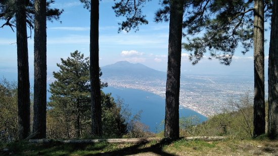 Monte Faito e Panorama: Panorama dal bosco di Monte Faito