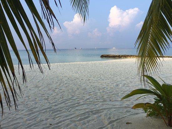Alimatha Island: photo0.jpg