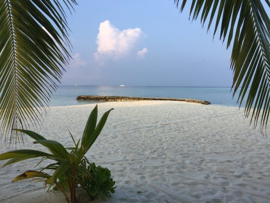 Alimatha Island: photo1.jpg