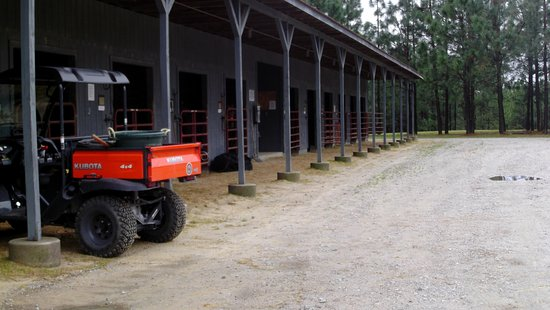Cheraw, Carolina del Sud: Horse barn