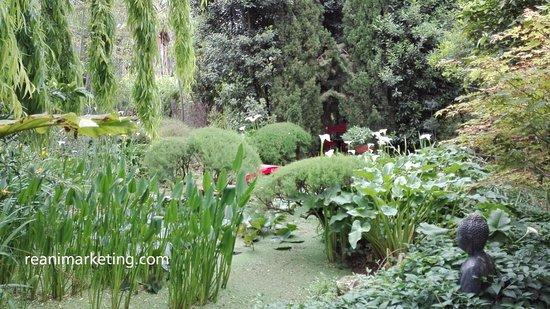 Un sitio zen en el ejido almer a picture of jardin for Jardin botanico almeria