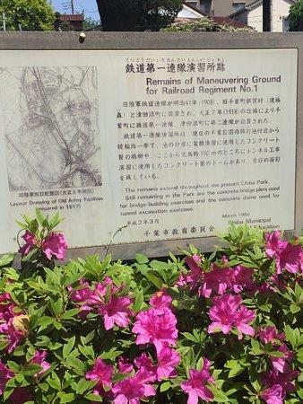 Chiba Park: 千葉公園